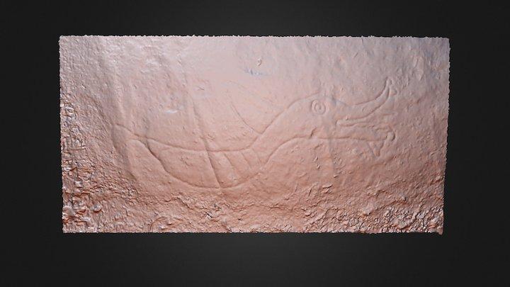 Gabriola Island Petroglyph #1