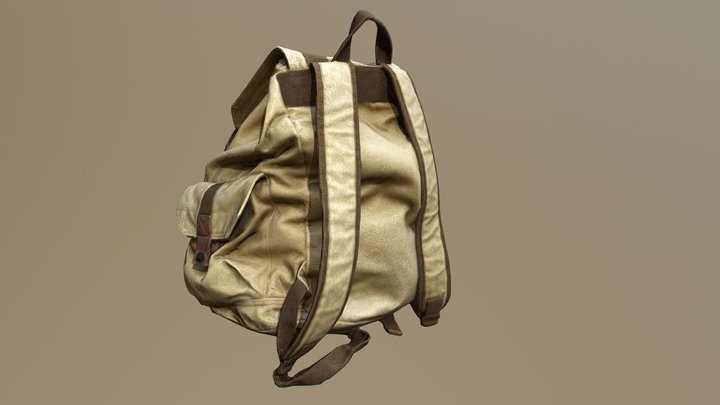 BackPack Photogrammetry 3D Model