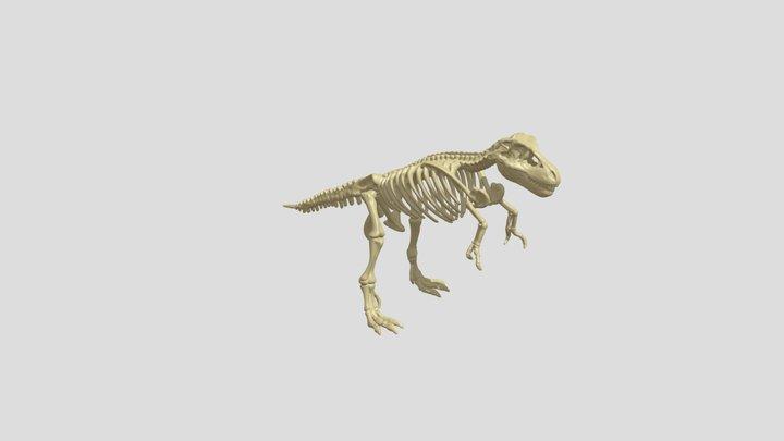 T-rex Skeleton 3D Model