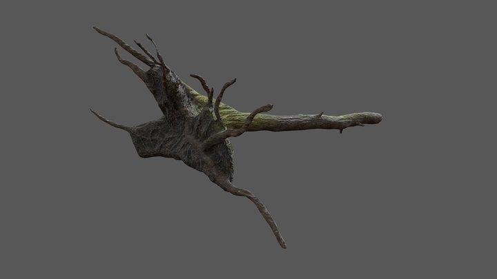 Tree Log B 3D Model