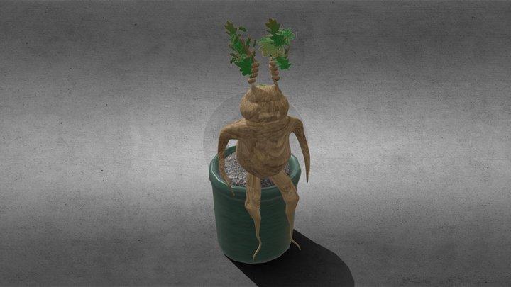 Mandrake 3D Model