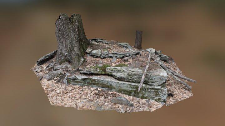 The Chipmunk Condo. 3D Model