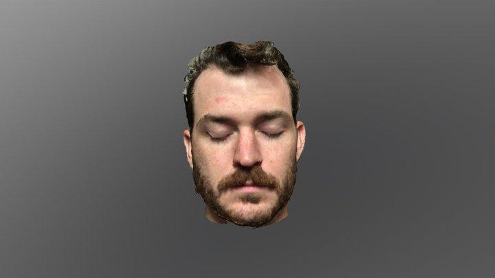 Cole life mask 3D Model