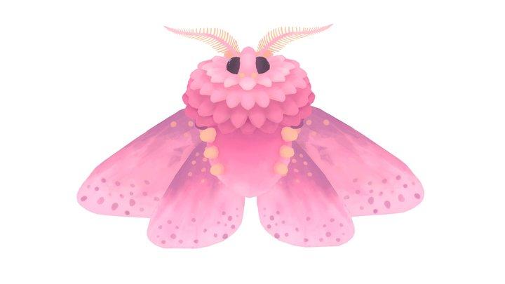Rosy moth 3D Model