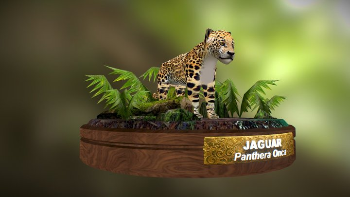 Panthera Onca 3D Model