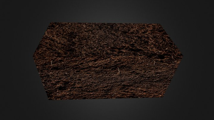 Earth- Recovered 3D Model