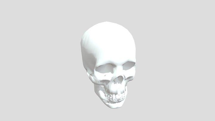 Melva Mitchell Skull 3D Model