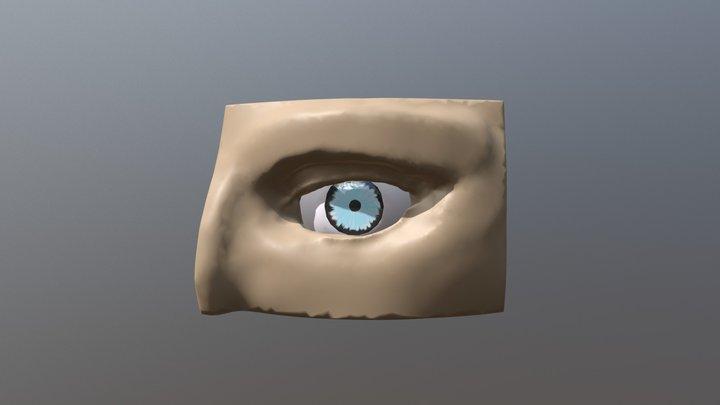 Eye - SculptJanuary2018 Day 8 3D Model