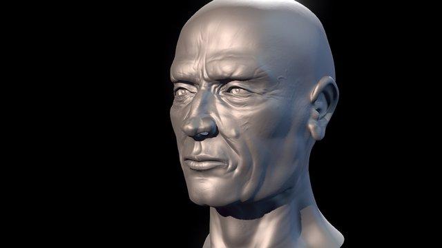 Male Head Sculpt HighPoly 3D Model