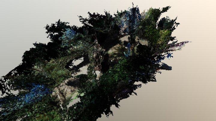 Test - Garden 3D Model