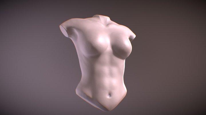 Sculpt January Day 29 - Female Torso 3D Model
