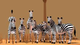Zebras 3D Model