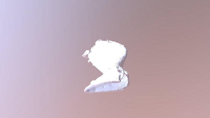 Nopal_2 3D Model