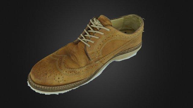 Raw Shoe 3D Model
