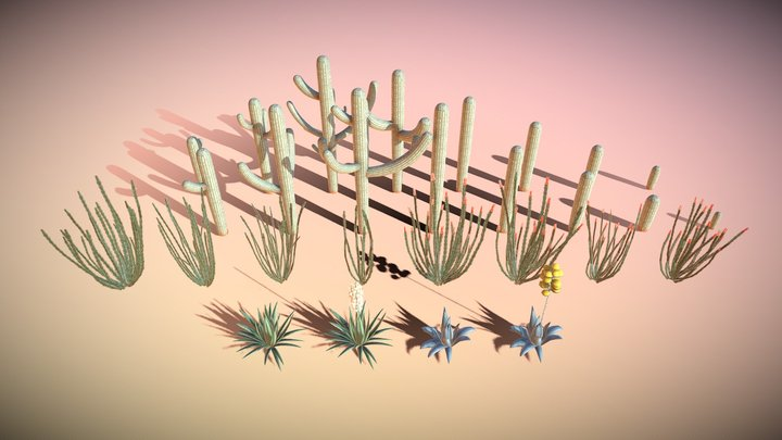 Cactus Set 3D Model