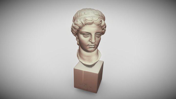 Dama Calagurritana 3D Model
