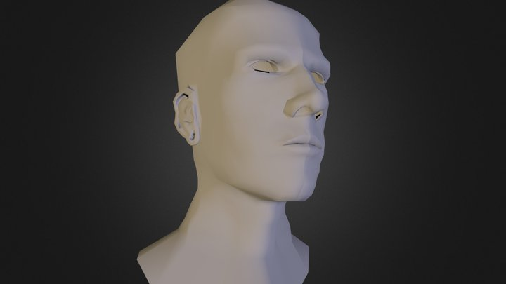 Self Portrait Head WIP 3D Model