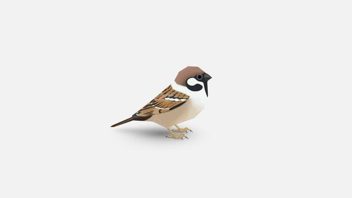 House sparrow 3D Model