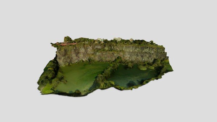 Lago en la cantera de los pumas - CDMX 3D Model