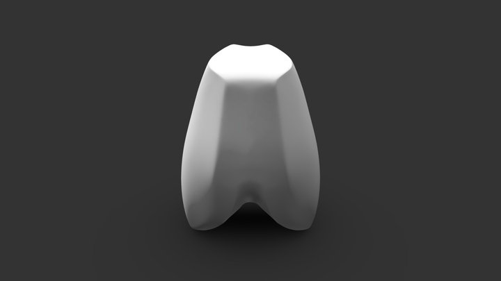 Bammes Ribcage 3D Model