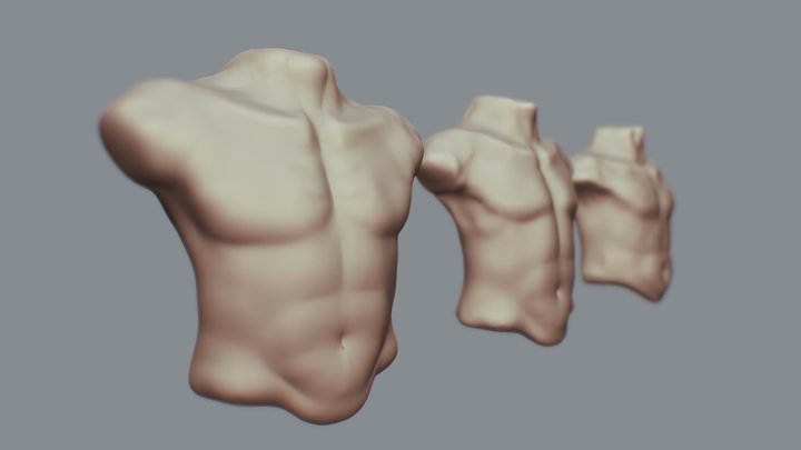 Day 22 - Male Torso #SculptJauary18 3D Model