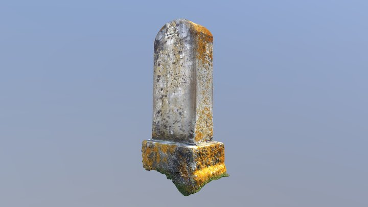 The Carter Stone 3D Model