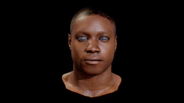 Free_basemesh_head_man 3D Model