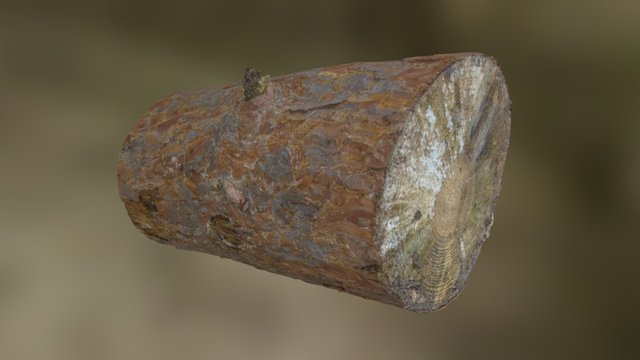 Woodland Scan Objects - Example Log 3D Model