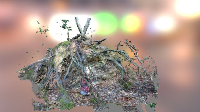 Hiding in the roots 3D Model