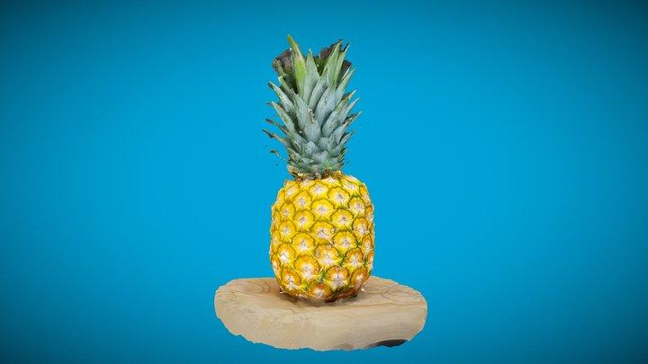 Pine & Apple 3D Model