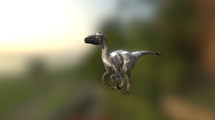 Raptor dinosaur, 154 game animations 3D Model