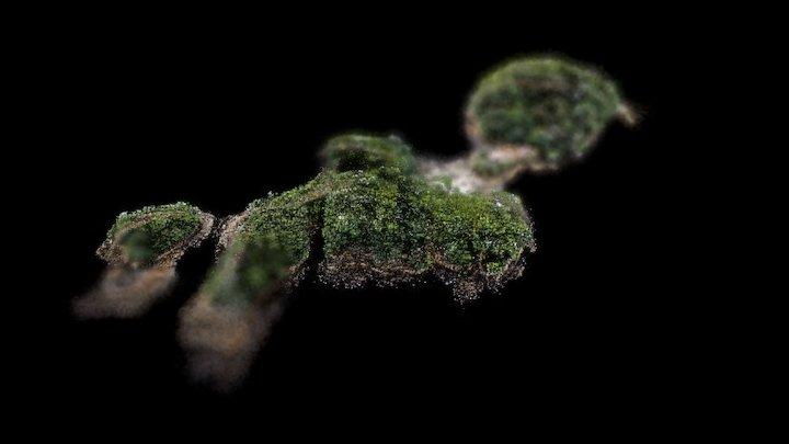 Garden Island Small Cloud 3D Model