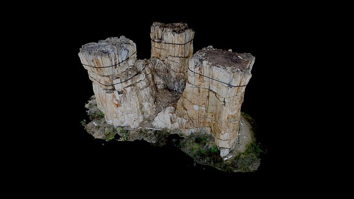 Trio at Florissant Fossil Beds 3D Model