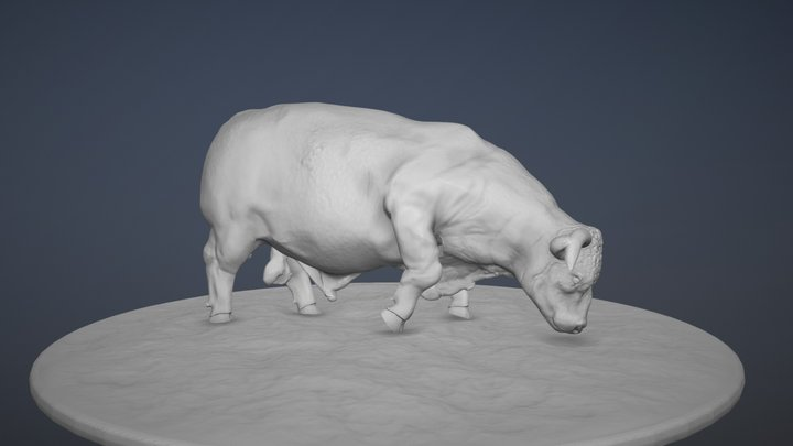 WIP Grazing Bull Revision - 1/64 Scale