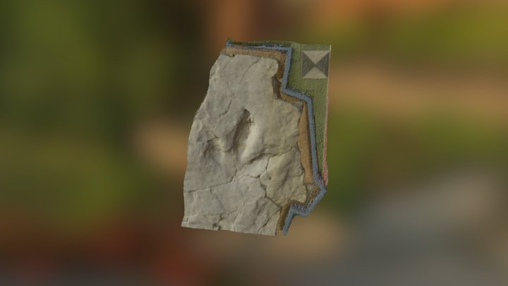 Dinosaur footprint - Museum of Camposilvano 3D Model