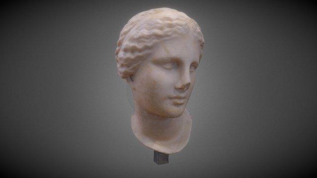 Venus (Musée Saint-Raymond Toulouse) 3D Model