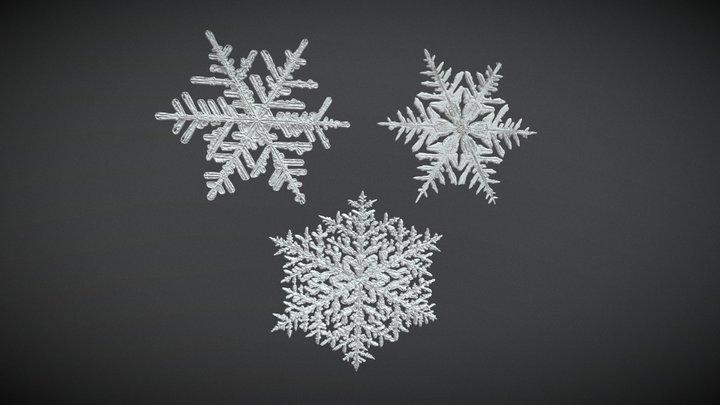 Snowflake multi-pack 3D Model