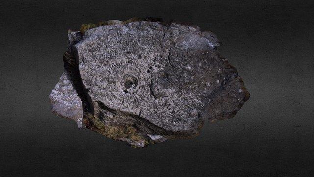 Armenian Petroglyph Boulder