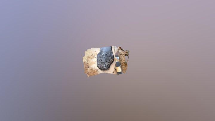 Syracuse Lava - Inflated Toe 3D Model
