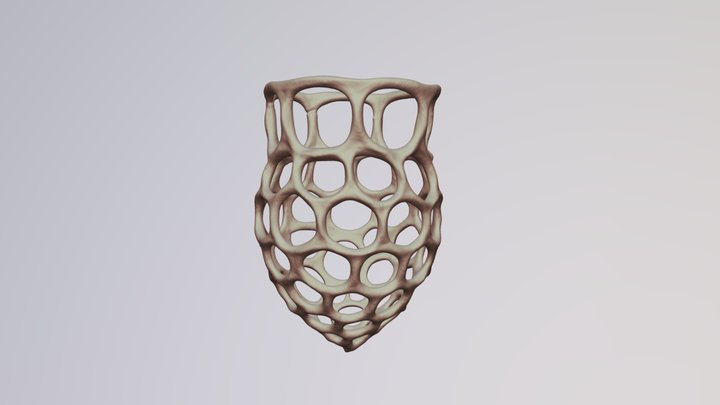 Dictyocysta sp.(Tintinnid Ciliate) 3D Model
