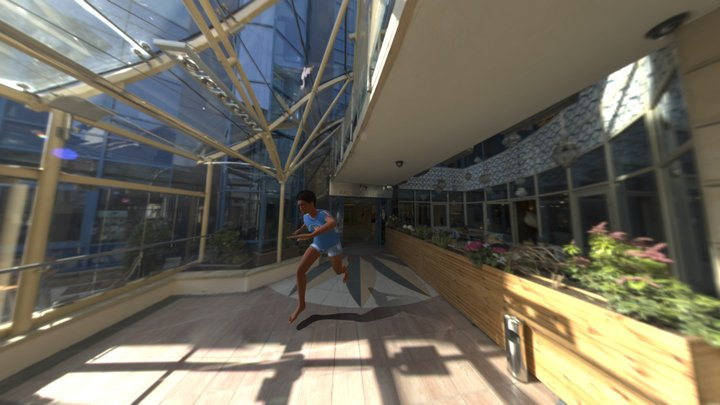 Capoeira 3D Model