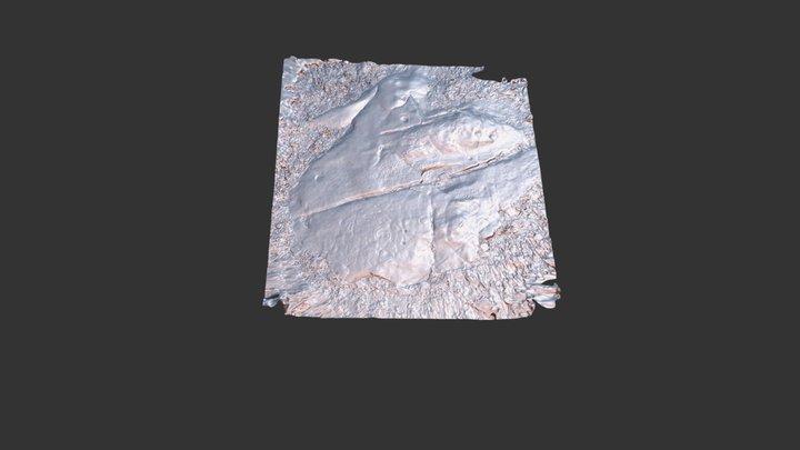 Laje dos Sinais 3D Model