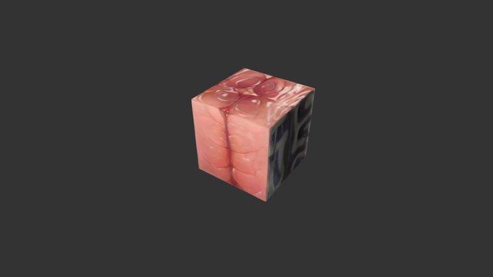 Texturing Exercise Box Mackerel 3D Model