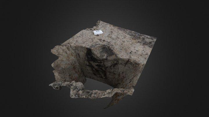 N23 Bronstijd paalkuil met hondenpoot (HD) 3D Model