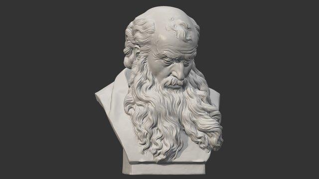 Head of a Bearded Old Man 3D Model