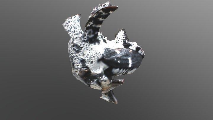 [REAL SPECIMEN] Tree Hopper2 3D Model