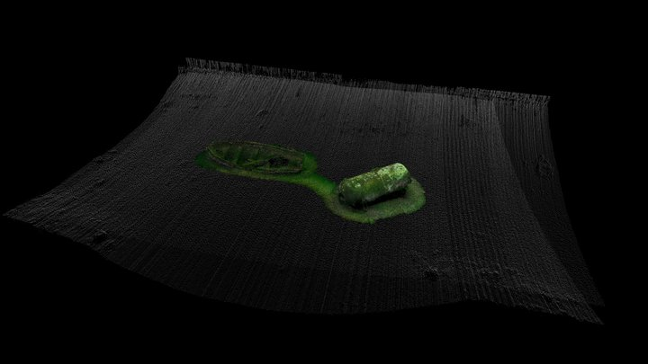 Test Multibeam And Scan - Cloud_17 3D Model