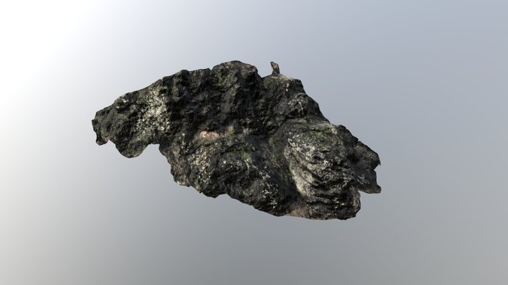 Rokštejn cliff 3D Model
