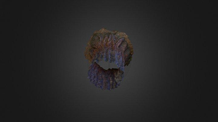 Tree_Agisoft_Test 3D Model