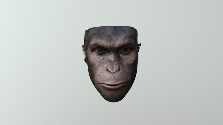 Caesar 3D Model